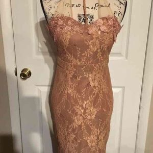 Tan dress with lace and choker neckline. NWT